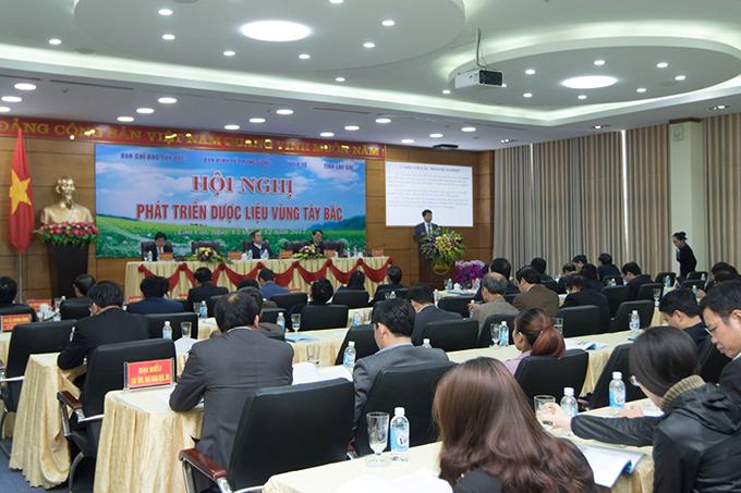 Sao Thái Dương tham gia hội nghị phát triển dược liệu Tây Bắc